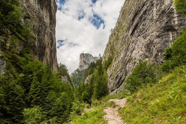 El pico de las montañas del altar del cañón bicaz.