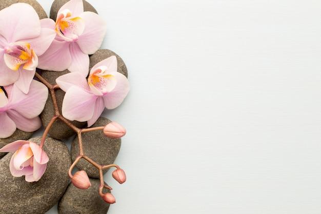 Piedras de spa sobre fondo de madera con orquídeas.