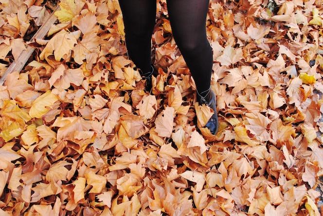 Piernas de una niña disfrutando de hojas de otoño