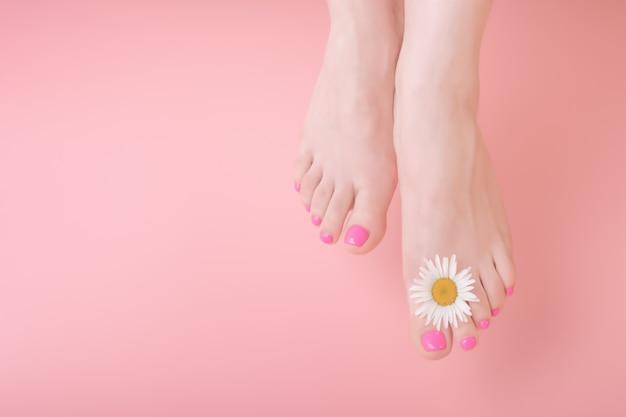Piernas de las mujeres con pedicura brillante sobre un fondo rosa. decoración de flores de manzanilla. concepto de cuidado de la piel pedicura spa