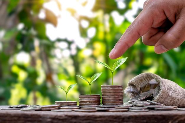 La pila de árbol del dinero plantado en secuencia incluye una moneda que sostiene la mano con un árbol en la moneda.
