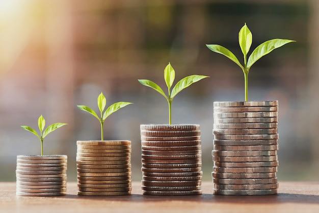Pila de dinero y paso de crecimiento de plantas jóvenes. concepto de contabilidad financiera