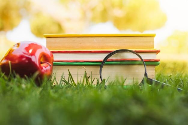 Pila de libros cerca de manzana y lupa sobre hierba