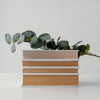 Pila de libros con planta y fondo blanco.