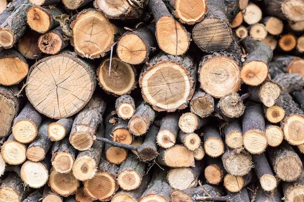 Pila de maderas