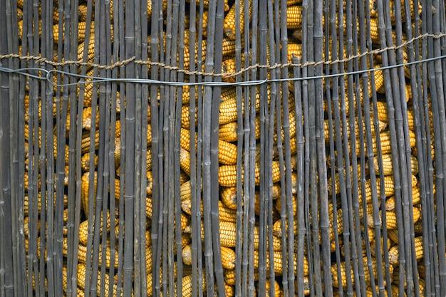 Pila de maíz en una valla de bambú