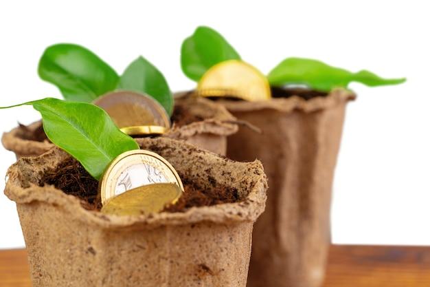 Pila de monedas de dinero y concepto financiero de planta creciente
