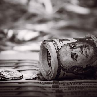 Pilas de monedas contra el fondo de billetes de cien dólares se encuentran dispersas por todo el espacio. las monedas se recogen en dos columnas. el estilo es blanco y negro.