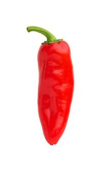Pimienta de chile rojo sobre fondo blanco. ingrediente alimenticio