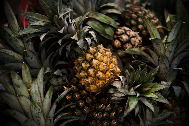 Piña ananas cítricos juicy nutrition pina
