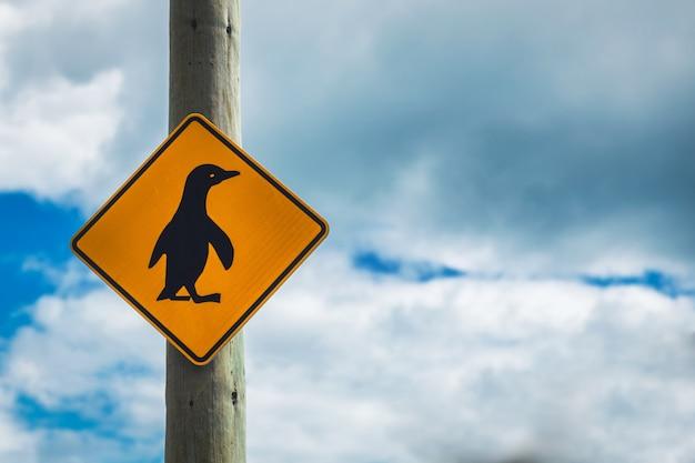 Pingüinos cruzando el signo con cielo nublado en otago, nueva zelanda