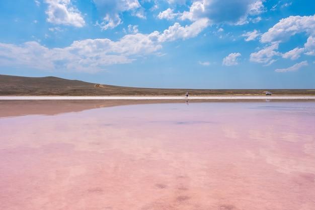 Pink salt lake koyashskoe con el reflejo de las nubes