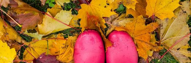 Pink wellingtons .botas de goma de un niño en un césped después de una lluvia en un tormentoso día de otoño