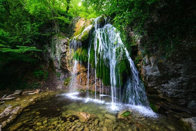 Pintoresca cascada en un exuberante bosque verde de verano