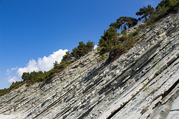 Pintorescas rocas en una playa salvaje de piedra. un cielo azul y algunas nubes adornan el paisaje estival. bosque y zona de acampada en las afueras de la ciudad turística de gelendzhik. rusia, costa del mar negro
