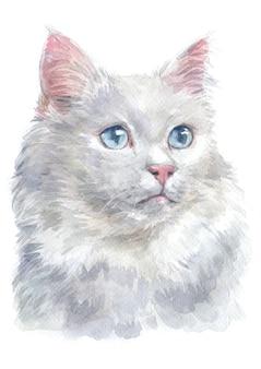 Pintura al agua de la van turca cat