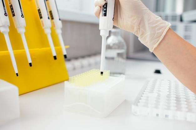 Pipetear con varios tubos de ensayo. mano de mujer en guantes de látex blancos en dispensador de llenado de laboratorio químico con el líquido. prueba de adn