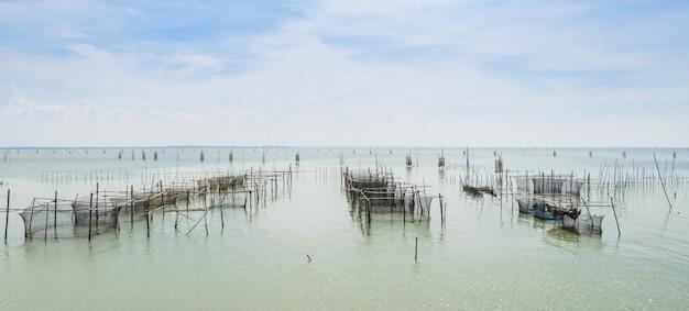 Piscicultura marina en tailandia
