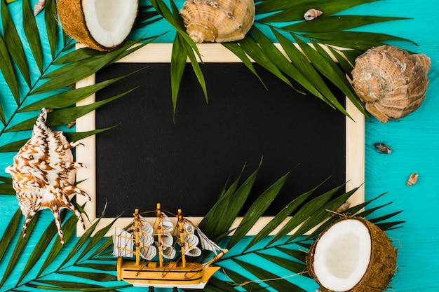 Pizarra con hojas de planta y cocos cerca de conchas marinas