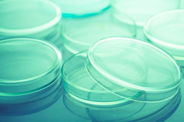 Placas de petri en laboratorio luz azul cerrar