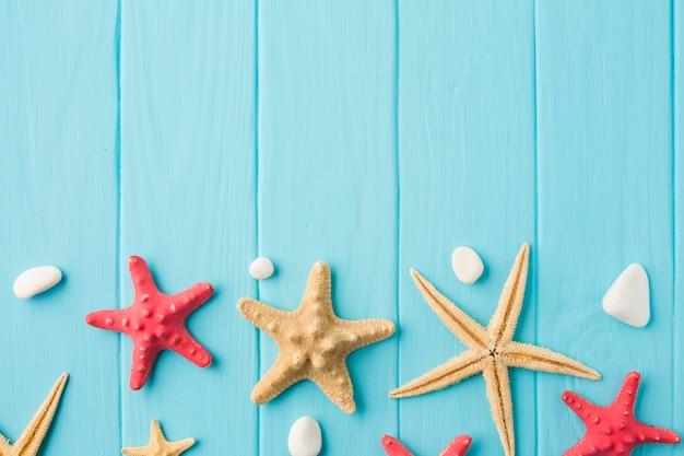 Plana pone estrellas de mar y conchas marinas en tablero de madera con espacio de copia