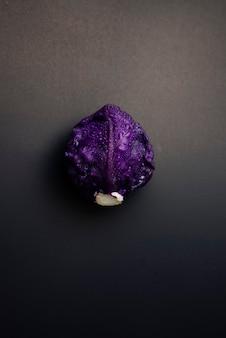 El plano de la col roja yacía en la vida del foodstill del fondo de la textura del grunge oscuro con la fotografía cambiante oscura