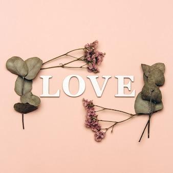 Plano creativo laicos de la palabra amor sobre fondo de color suave con plantas naturales.