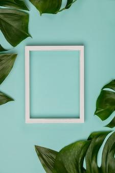 Plano creativo con planta tropical y fondo de marco blanco