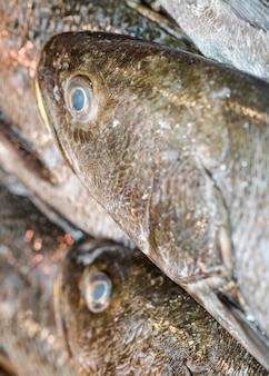 Plano macro de pescado fresco