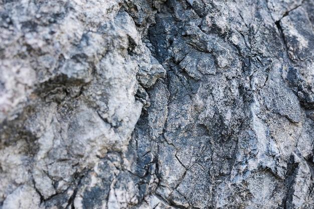 Plano macro de la roca