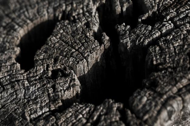 Plano macro de textura de madera