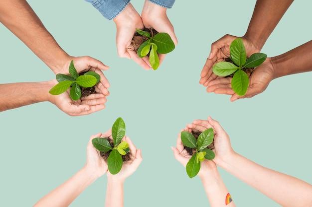Planta de ahuecamiento de manos para salvar el medio ambiente