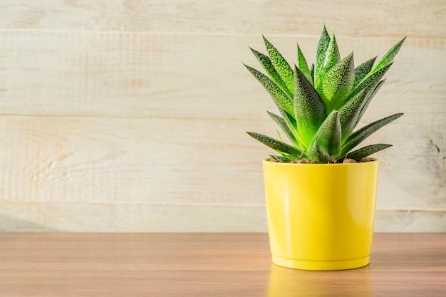 Planta de aloe vera en maceta de cerámica amarilla en mesa de madera. jardinería doméstica, copyspace para texto