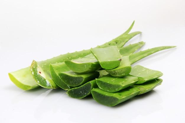 Planta de aloe vera que tiene muchos beneficios para la salud.