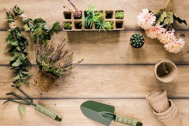Planta; bandeja de turba; flor; maceta de turba planta suculenta y equipos de jardinería en mesa marrón.