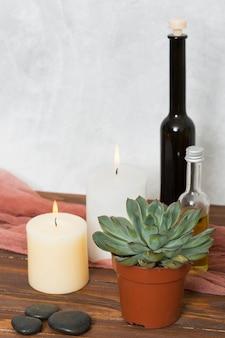 Planta de cactus; vela encendida la piedra y la botella de aceite esencial en el escritorio de madera.