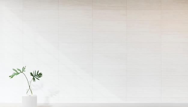 Planta contra una maqueta de pared blanca
