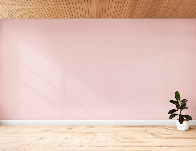 Planta contra una pared rosa