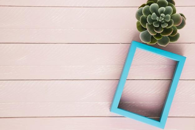 Planta decorativa y marco con copia espacio.