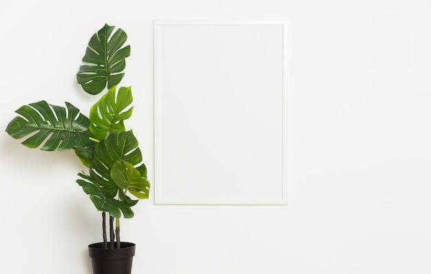 Planta decorativa con marco vacío