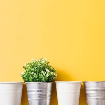 Planta en maceta de plata con maceta blanca sobre fondo amarillo