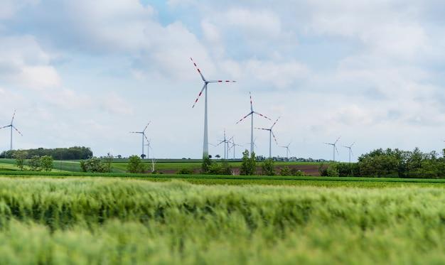 Planta de energía eólica natural y energía ecológica sostenible.