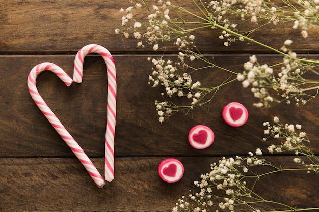 Planta con flores cerca de bastones de caramelo y jaleas.