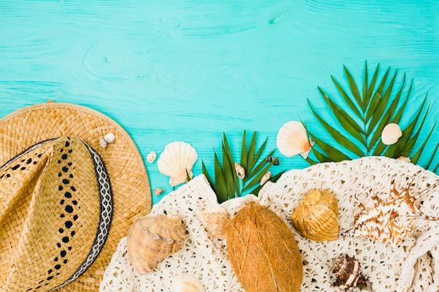 Planta de follaje cerca de sombrero con coco y conchas marinas.