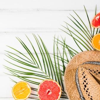Planta de hojas cerca de frutas exóticas frescas y sombrero a bordo.