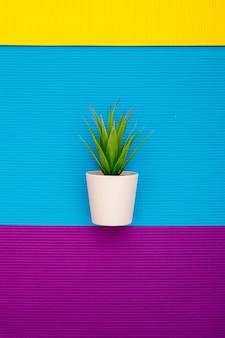 Planta de interior en una maceta sobre un fondo abstracto de hojas de papel de colores