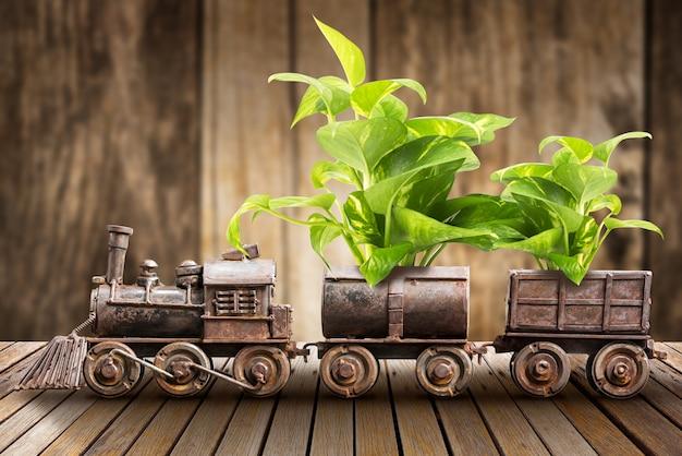 Planta de interior y tren