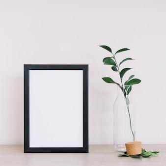 Planta y un marco