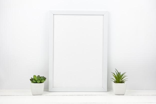Planta suculenta pequeña y marco vacío en casa.