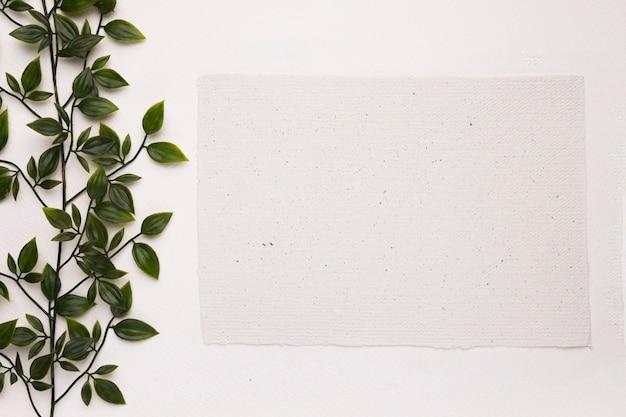 Una planta verde artificial cerca del papel en blanco sobre fondo blanco.